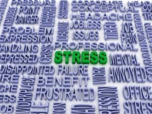 STRESS1 (2)
